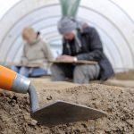 Археологи нашли на юге Приморья уникальный могильник эпохи Империи Цзинь