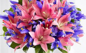 Цветы пахнут активно