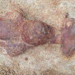 Археологи обнаружили близ Смоленска меч X века