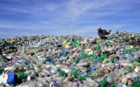 К 2050 г. мы выкинем пластика больше, чем за всю предшествующую историю