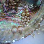 Биологи выяснили роль белков в создании перламутра моллюсками