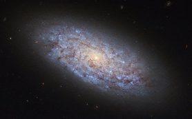 Темная материя в галактике NGC 5949 распределена «неправильно», говорят ученые