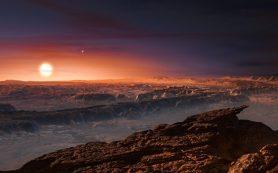 Астрономы рассказали о судьбе Земли на орбите Проксимы Центавра