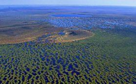 Ученые ТГУ создают станцию для изучения климата на крупнейшем болоте мира