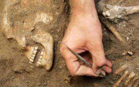 Древняя ДНК рассказала о происхождении и судьбе хананеев