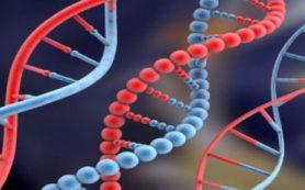 Российские и немецкие генетики открыли систему защиты насекомых от токсинов