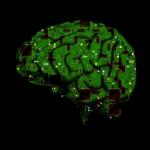 Радиофизики ННГУ имени Лобачевского разрабатывают нейрочип для замены поврежденных участков мозга