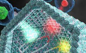Ученые НИОХ СО РАН синтезировали новое соединение, эффективное против вируса гриппа