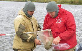 Ямальские ученые дадут рекомендации по восстановлению загрязненного озера Ханто