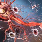 """Ученые поняли, почему при болезни Альцгеймера клетки """"переваривают"""" сами себя"""