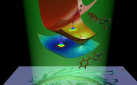 Химики МГУ объяснили природу излучения зеленого флуоресцентного белка