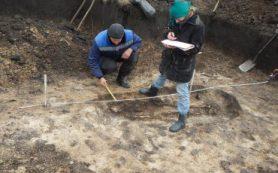 Археологи обнаружили первый в Белгородской области могильник скифов