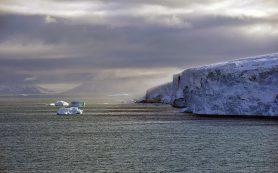 Таяние льда останавливает развитие флоры и фауны в Арктике