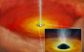 Собственное вращение черной дыры влияет на «громкость» квазара в радиодиапазоне