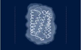 Как свет управляет нервной клеткой