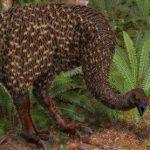 Ископаемые экскременты помогли разобраться с ролью птиц в экосистеме
