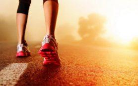 Антиоксиданты не помогают против боли в мышцах