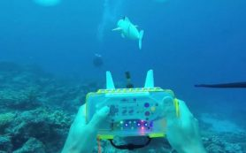 Ученые создали реалистичную рыбу-робота