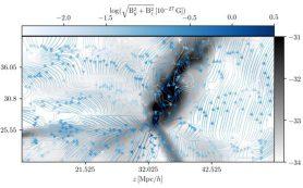 Астрофизики рассчитывают первичное магнитное поле в окрестностях нашей Галактики