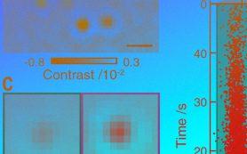 Ученые взвесили белковые молекулы с помощью света