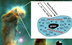 Эволюция молекул: формирование «строительных кирпичиков» жизни в космосе