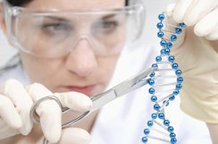 Метод редактирования генов поспешили обвинить в неточности