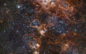 Туманность Тарантул светится яркими огнями, словно ночной мегаполис