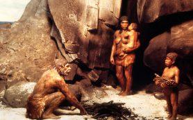 Статистический анализ отодвинул время расхождения неандертальцев и денисовцев