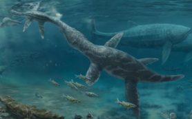 Ископаемые зубы показывают, как морские рептилии юрского периода адаптировались к изменениям уровня моря