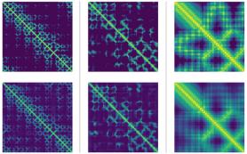 Нейросеть научили предсказывать структуру белка по нуклеотидной последовательности