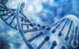 Естественный отбор — лучший критик науки