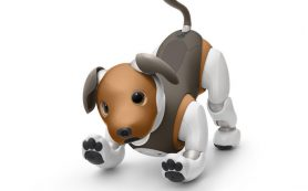 Робота-собаку обучат сторожевым функциям