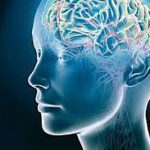 В мозге нашли место для времени