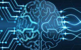 Физики ПетрГУ создали нейросеть из простейших искусственных нейронов
