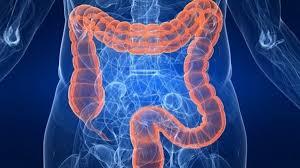 Инсулин может защитить от рака кишечника