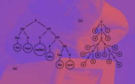 Физик сравнил обучение первому языку с фазовым переходом