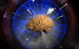 Мозг искажает пространство в зависимости от собственных целей