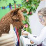 В контактных зоопарках живут лекарственноустойчивые бактерии