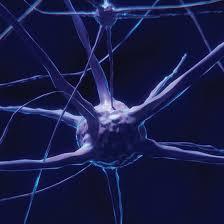 Ученые сумели расшифровать структуру одного из важнейших белков нервной системы