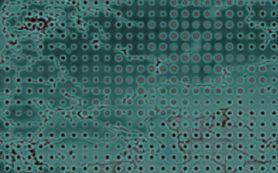 Выброс рутения в 2017 году связали с производством источника нейтрино