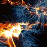 Малые дозы рентгеновского излучения не вредят стволовым клеткам человека