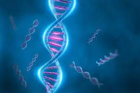 Медленная жизнь спасает от смертельных мутаций