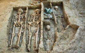 В Фанагории нашли неразграбленное захоронение зажиточного воина V века