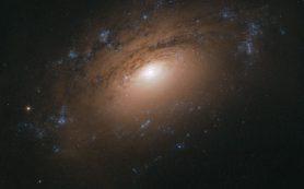 Снимок: «Хаббл» запечатлел спиральную галактику, затянутую пеленой пыли