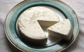 Говядина и мягкий сыр стали источниками устойчивой к антибиотикам сальмонеллы