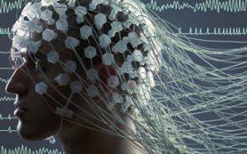 В ИТЭБ РАН раскрыли одну из тайн работы памяти