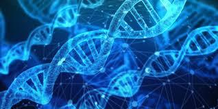 Свой ген не хуже чужого