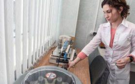 В ИЦиГ СО РАН создали новый препарат от ишемии