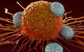 Ученые «подействовали на нервы» раковых клеток