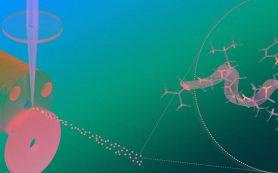 Физики впервые показали квантовую природу пептидов